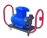 Petroll EX насос для перекачки бензина керосина Напряжение 220 В.